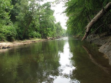 Brown water of Sepulga River